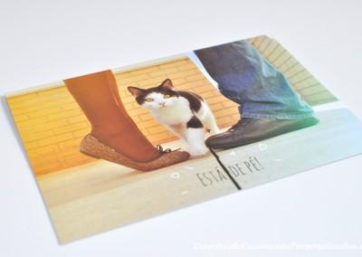 01-convite-casamento-historia-diana-nuno-gato