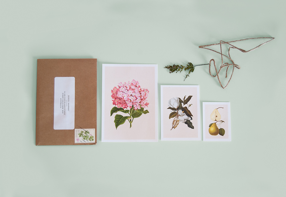 convite casamento botanico elementos